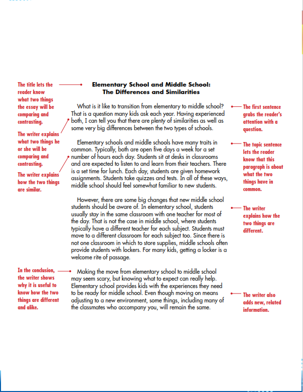 Compare and Contrast Essay Example